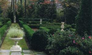 landscape design -troy rhone