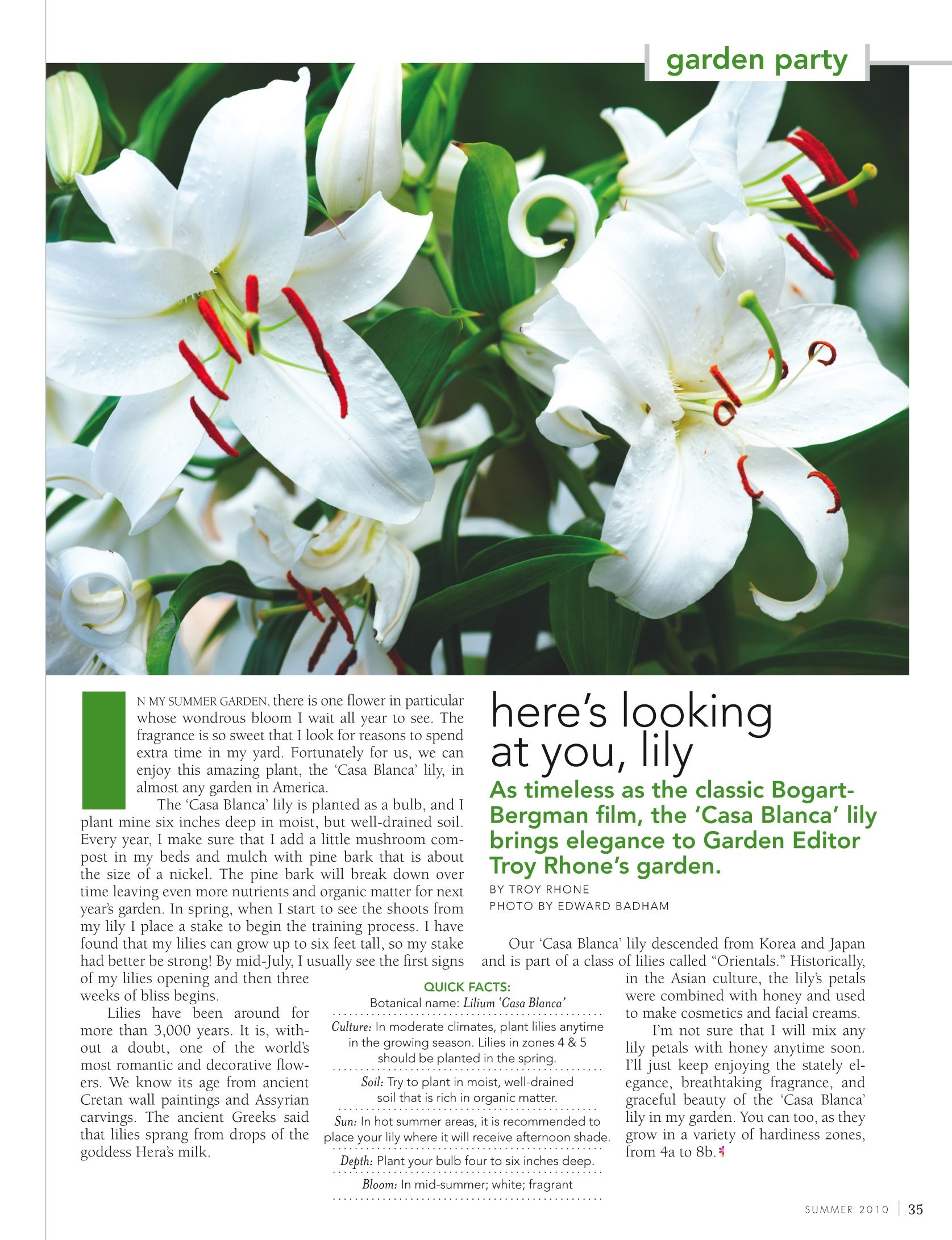 Give classic flair to modern landscape design with lilies troy learn more about the lily the article heres looking at you lilyoriginally published in flower izmirmasajfo