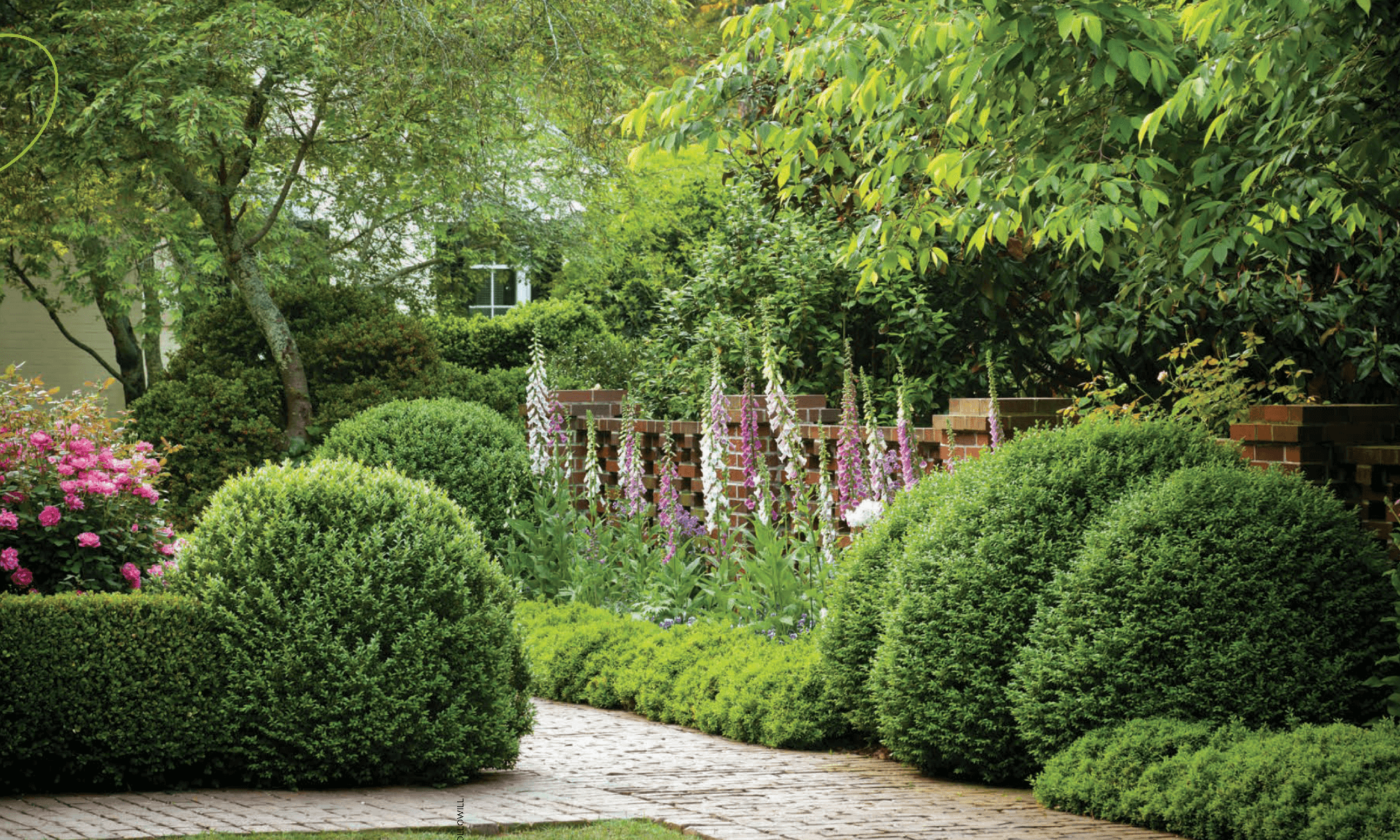 modernist garden design - troy rhone landscapes and gardens
